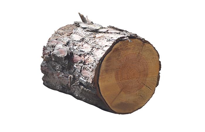 Kotly na drevo, ktoré vám vykúria dom